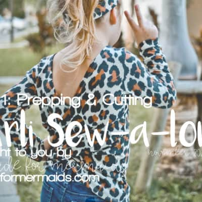 Carli Sew-a-long: Day 1